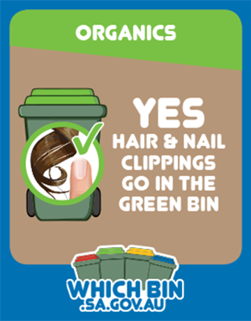 Nail clippings and hair are good to go in the green bin.