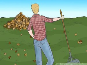 Mulch-Leaves-with-a-Lawn-Mower-Step-7